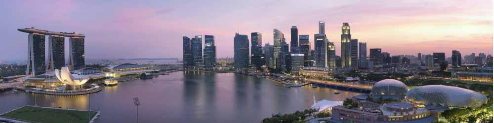 Export Consumer Goods - Shenzhen to Singapore